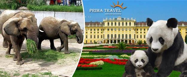 ZOO Viedeň, zámok Schönbrunn a jeho krásne záhrady