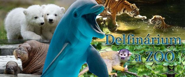 3-dňový zájazd do delfinária a ZOO v Norimbergu