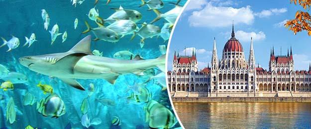 Jednodňový zájazd do Budapešti s návštevou Tropicaria
